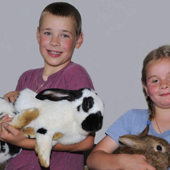 Vacanze in agriturismo con bambini in Alto Adige