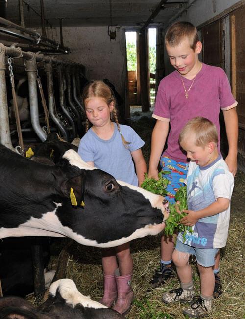 vacanze-bambini-in-fattoria